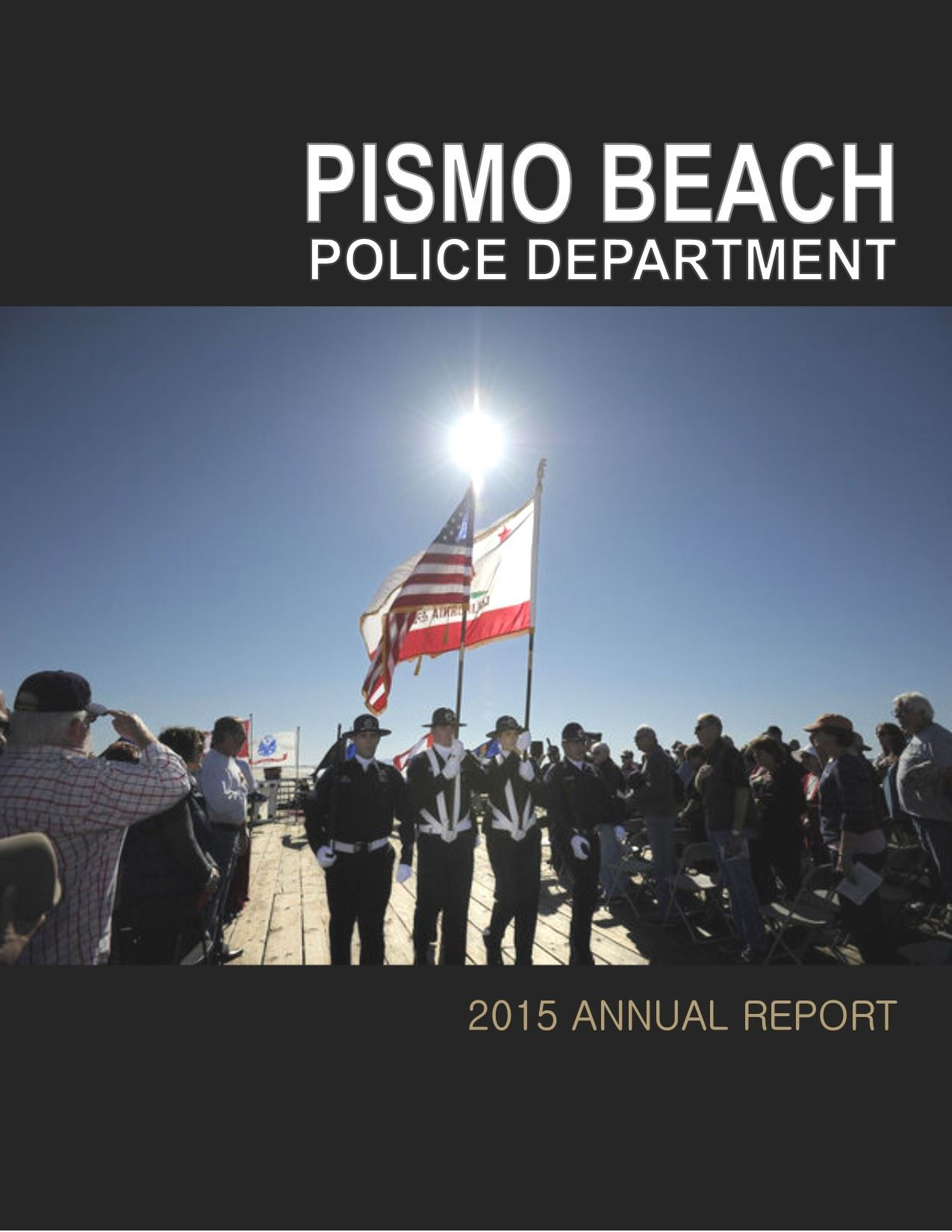 2015 Police Annual Report